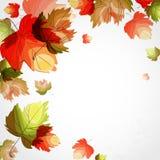 秋天背景。 库存照片