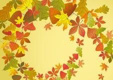 秋天背景。 免版税库存图片