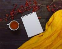 秋天背景上与黑褐色分支用小苹果,一杯茶,一个开放笔记本和黄色毛线衣 免版税库存图片