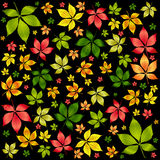 秋天背景五颜六色的叶子向量 库存照片