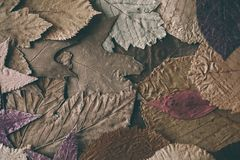 秋天背景划分为的叶子 设计的五颜六色的叶子背景和纹理 关闭秋叶看法作为背景 库存照片