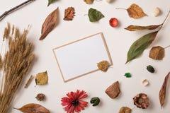 秋天背景和邀请与干燥叶子 免版税库存照片
