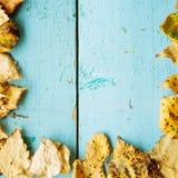 秋天背景在木的空间的复制叶子 免版税图库摄影