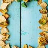 秋天背景在木的空间的复制叶子 库存图片