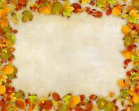 秋天背景框架留下老纸张 库存照片