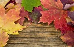 秋天背景楼层留下老木头 免版税库存照片