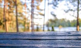 秋天背景特写镜头上色常春藤叶子橙红 产品显示的模板布局 库存照片