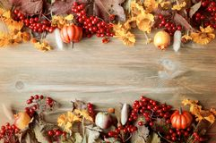 秋天背景特写镜头上色常春藤叶子橙红 季节性秋天自然莓果,南瓜,苹果,在木背景的花 仍然秋天生活 库存照片