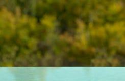 秋天背景特写镜头上色常春藤叶子橙红 绿色背景 纹理 Bokeh作用 迷离 免版税库存图片