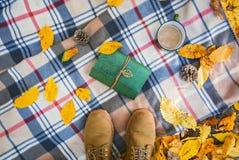 秋天背景特写镜头上色常春藤叶子橙红 在格子花呢披肩的起动在有黄色叶子、书和杯子的一个森林里咖啡 库存图片