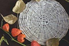 秋天背景特写镜头上色常春藤叶子橙红 库存图片