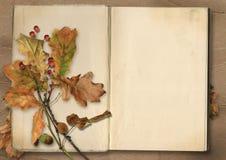 秋天背景特写镜头上色常春藤叶子橙红 与叶子的葡萄酒册页 免版税库存图片