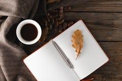 秋天背景特写镜头上色常春藤叶子橙红 叶子围拢的一杯茶,巧克力 图库摄影
