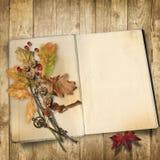 秋天背景特写镜头上色常春藤叶子橙红 在木背景的旧书与叶子 库存照片