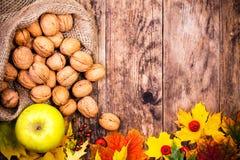 秋天背景用核桃和五颜六色的树叶子 免版税库存图片