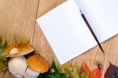 秋天背景用蘑菇 库存照片