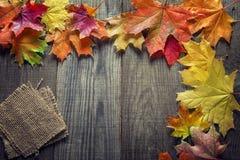 秋天背景用香料,在老难看的东西木头de的橙色叶子 免版税图库摄影
