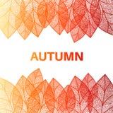 秋天背景留给无缝 库存照片