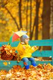 秋天背景的小男孩  有彩虹伞的公园我 免版税库存照片