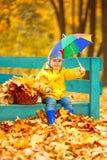 秋天背景的小男孩  有彩虹伞的公园我 库存图片
