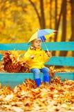 秋天背景的小男孩  有彩虹伞的公园我 图库摄影