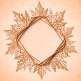 秋天背景美丽的叶子槭树 皇族释放例证