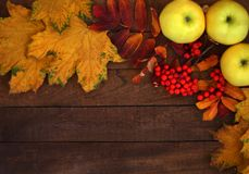 秋天背景苹果和黄色叶子在木背景与拷贝空间 免版税图库摄影