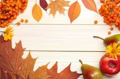 8秋天背景董事会上色了eps文件包括的叶子木 顶视图 库存照片