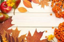 8秋天背景董事会上色了eps文件包括的叶子木 顶视图 库存图片