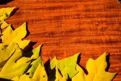 8秋天背景董事会上色了eps文件包括的叶子木 免版税库存照片