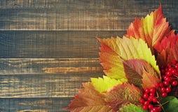 8秋天背景董事会上色了eps文件包括的叶子木 图库摄影