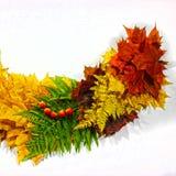 秋天背景,槭树叶子的元素 免版税图库摄影
