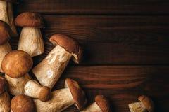 秋天背景, Porcini在黑褐色木头,拷贝空间采蘑菇 免版税图库摄影
