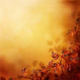 秋天背景 库存图片