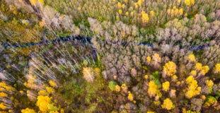 秋天自然 库存图片