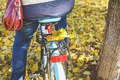 秋天自行车乘驾 在自行车树干的下落的槭树叶子  库存照片