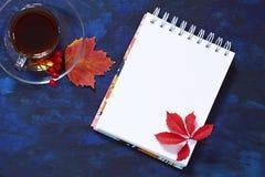 秋天舱内甲板从在一个透明碗的无奶咖啡放置在 免版税库存图片