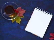 秋天舱内甲板从在一个透明碗的无奶咖啡放置在 免版税库存照片
