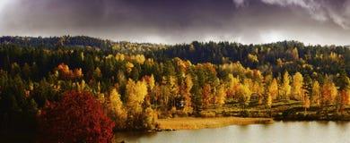 秋天色的风景、湖和森林 库存照片
