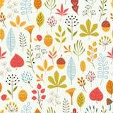 秋天花卉样式 库存照片