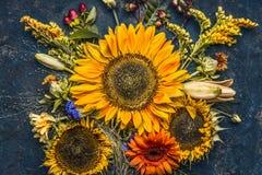 秋天花和叶子构成用在黑暗的土气背景,顶视图的向日葵 库存图片