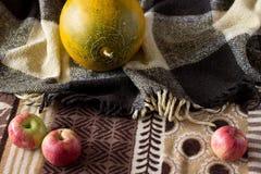 秋天苹果和瓜在背景中 免版税库存图片