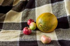 秋天苹果和瓜在背景中 免版税库存照片