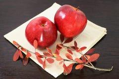 秋天苹果 库存图片