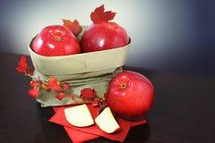 秋天苹果 图库摄影