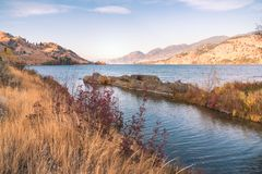 秋天草和叶子沿湖有山的由落日和蓝天点燃了 图库摄影