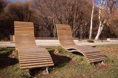 秋天草和叶子,哀伤的心情,寂寞,长凳 免版税库存照片