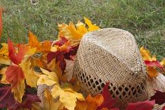秋天草帽和桔子叶子 库存图片