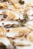 秋天草本和叶子和莓果在白色背景 免版税库存照片