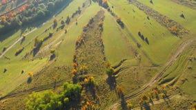 秋天草甸和森林4k空中寄生虫录影 股票视频